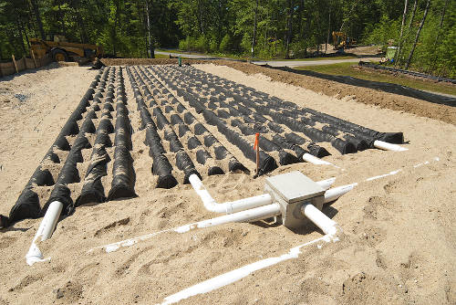 septic drainage field